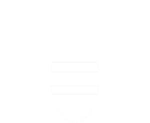 logo b.workshop abeille blanc sans fond
